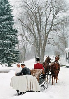 carriage ride, winter wedding inspiration
